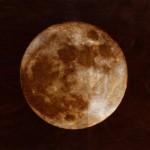 荻野NAO之 満月